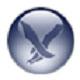 蓝鸟Flash播放器