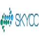 文章伪原创工具(skycc)