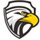 黑鹰威视监控软件